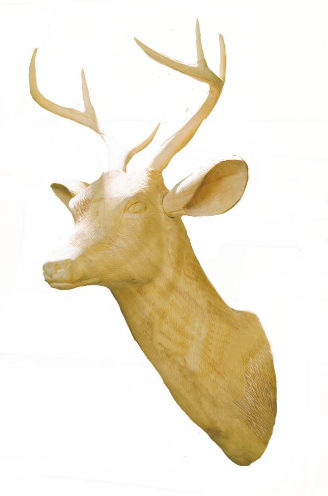 Testa di cervo in legno
