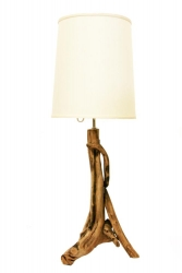 Table lamp in roots of forest